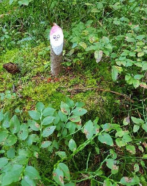 Ein kleiner Waldbewohner.JPG