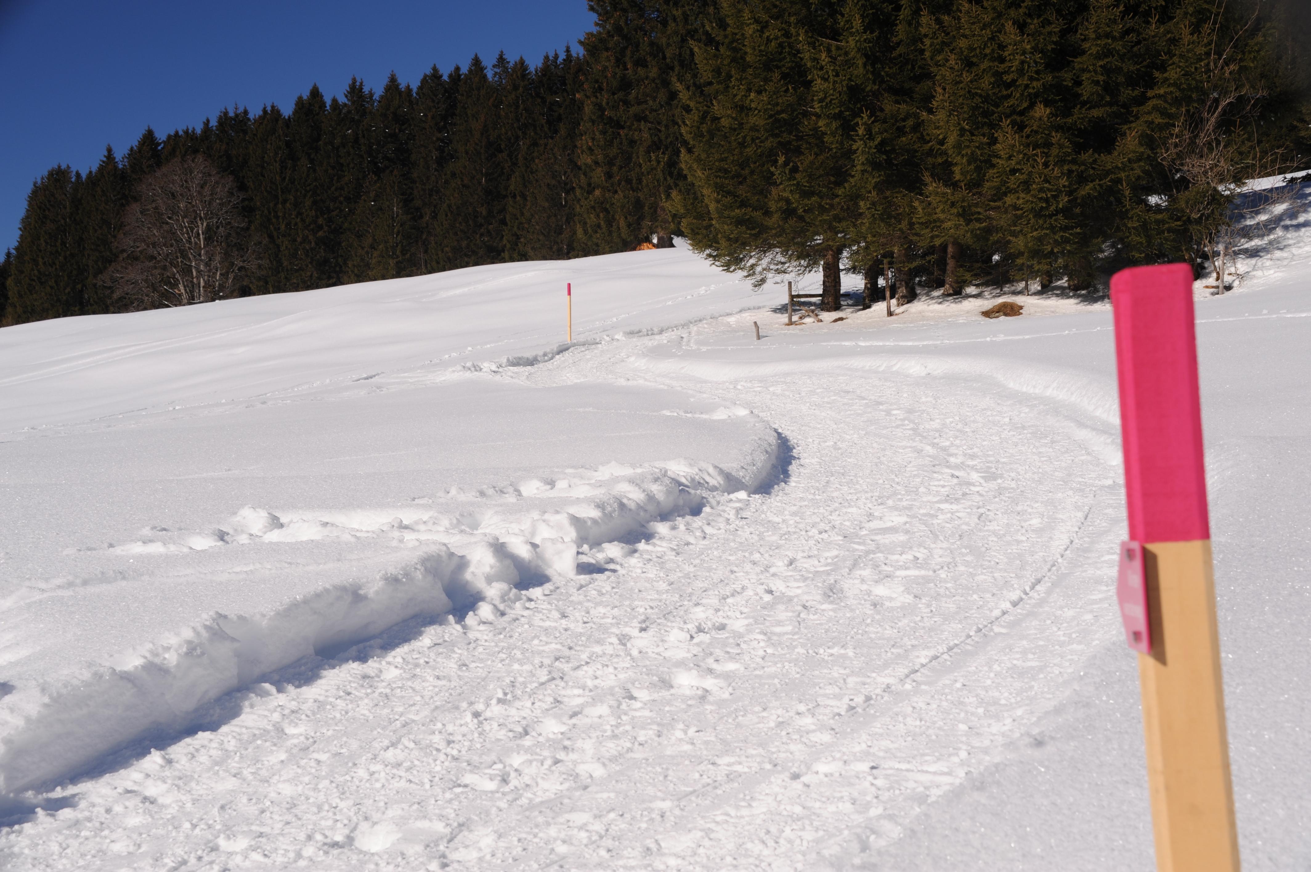 Winterwanderweg_RodelnLuisa_Winterbilder_Tropfen_Bäume_0081.JPG