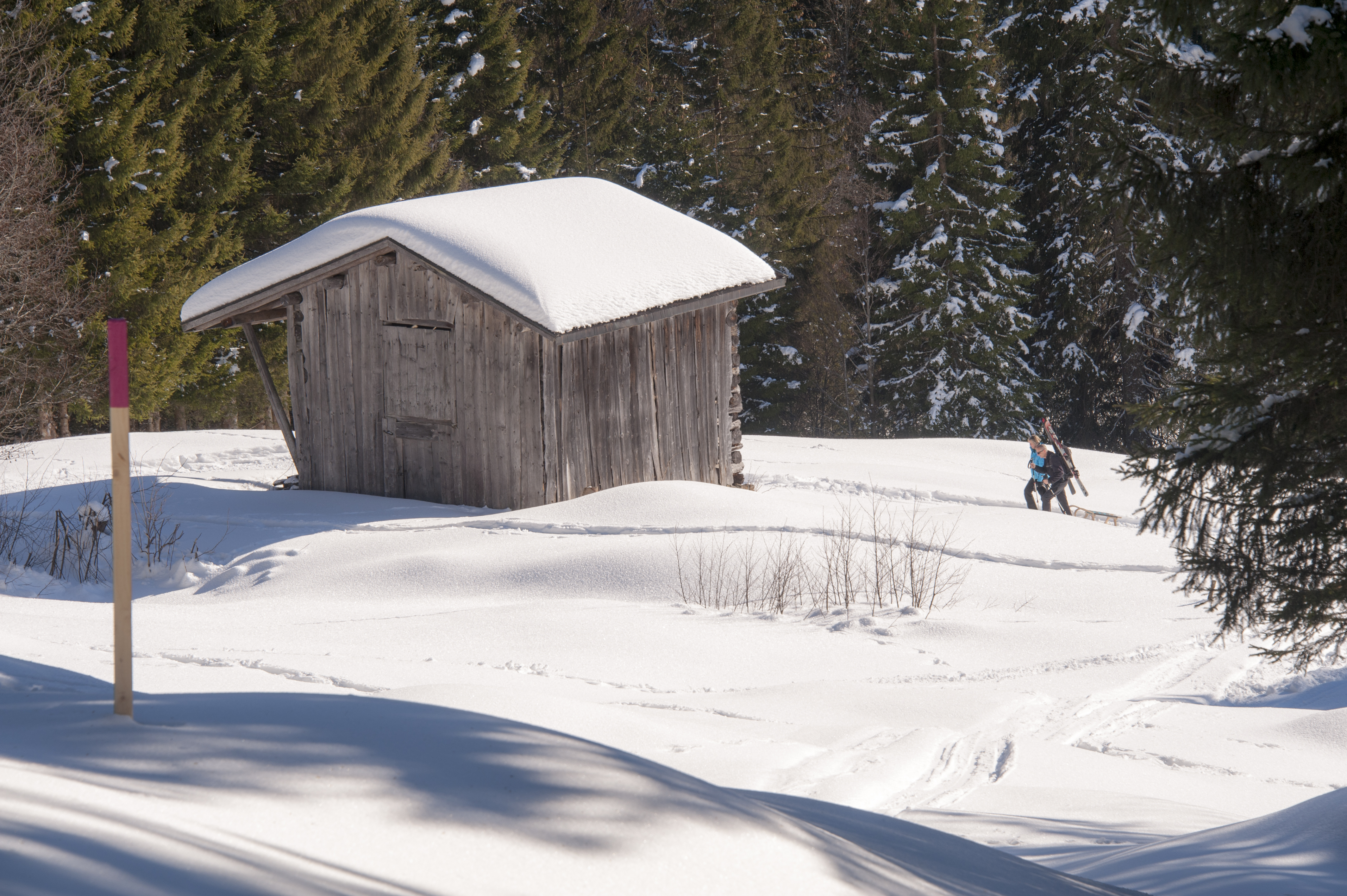 Winterwanderweg_RodelnLuisa_Winterbilder_Tropfen_Bäume_0107_1.jpg